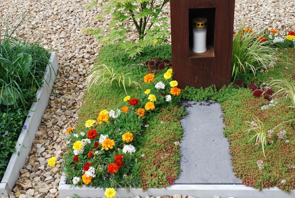 Eksperci zUniwersytetu Przyrodniczego weWrocławiu ozieleni na cmentarzach